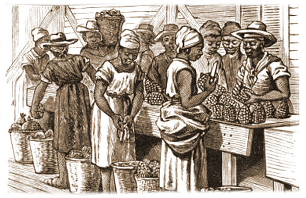 Smith & Wicks Canning Company - Workers paring the pineapple