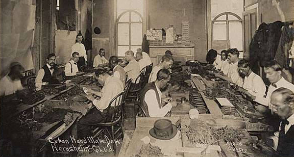 S. Hernsheim Brothers & Co Tobacco - Cuban Cigar Rolling Department