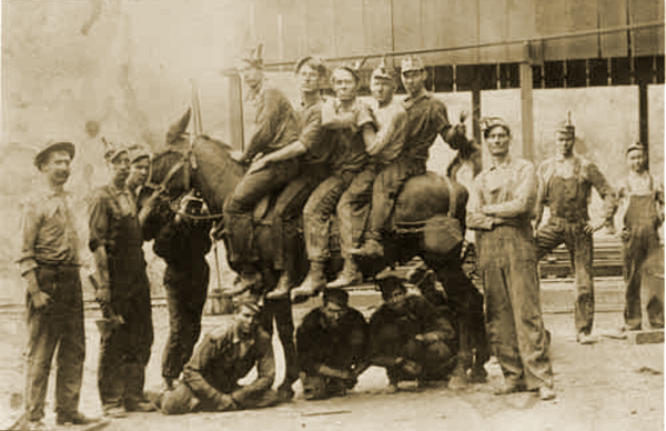 Group of Thurber Miners