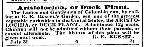 South Carolina Temperance Advocate and Register of Agriculture and General Literature (Columbia SC) Thursday August 07 1845 pg. 19 Issue 5.psd